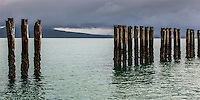 A section of the Okahu Bay breakwater piles with Rangitoto Island behind.