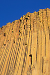 Evening light on column detail (columnar basalt) on the west face of Devil's Tower, Devil's Tower National Monument, Wyoming