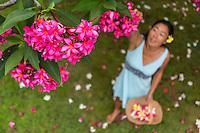 A local woman picks pink plumeria flowers in a yard on O'ahu.
