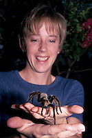 Woman holding Arizona Blond Tarantula, Aphonopelma chalcodes; Sonoran Desert, Arizona (MR)