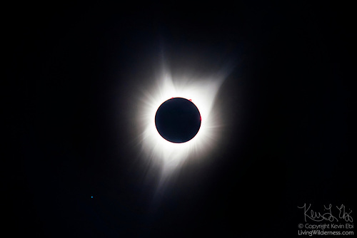 Solar Corona During Total Eclipse, Malheur County, Oregon