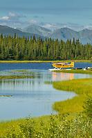 Bush plane on floats in tundra pond along the Glenn Highway, Alaska