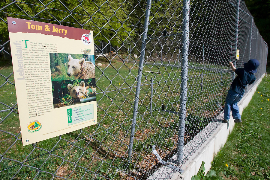 """Bears Tom & Jerry at the Bärenwald (Bear Forest), a high security area for retired circus or dancing bears run by """"Vier Pfoten"""". Every weekend, several families visit the Bärenwald with guided tours."""