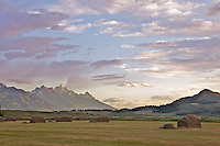 Cattle Ranch, Grand Tetons, Sunrise, pink sky, Jackson Hole, Wyoming