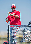 25 February 2016: Washington Nationals bullpen catcher Nilson Robledo tosses batting practice during the first full squad Spring Training workout at Space Coast Stadium in Viera, Florida. Mandatory Credit: Ed Wolfstein Photo *** RAW (NEF) Image File Available ***