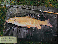 BNPS.co.uk (01202 558833)<br /> Pic: TomWren/BNPS<br /> <br /> A 16lb 5oz Barbel.<br /> <br /> A mystery fishing &quot;genius&quot; has sparked intrigue after pinning photos of his monster catches inside an angling club's riverbank lodge - in an enigma being dubbed 'Good Will Fishing'.<br /> <br /> The anonymous fisherman has systematically worked his way through a tough stretch of the River Avon and pulled in 19 once-in-a-lifetime catches in the last 12 months.<br /> <br /> And much like 1997 film Good Will Hunting, in which Matt Damon's genius character anonymously solves near-impossible mathematical equations while working as a janitor at a prestigious university, the angling Einstein showcases his brilliance in secret.