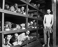 These are slave laborers in the Buchenwald concentration camp near Jena; many had died from malnutrition when U.S. troops of the 80th Division entered the camp.  Germany, April 16, 1945.  Pvt. H. Miller.  (Army)<br /> NARA FILE #:  208-AA-206K-31<br /> WAR &amp; CONFLICT BOOK #:  1105