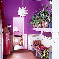 The vivid purple kitchen is simply furnished with coloured glassware and exotic fruit displayed on a stone bench