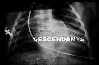 Descendants - The Shadow of Chernobyl