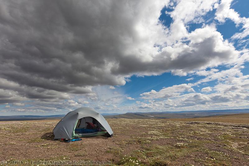 Tented camp, Utukok uplands, National Petroleum Reserve Alaska, Arctic, Alaska.
