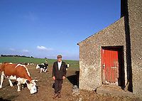 An Irish farmer stands outside of his home as cows graze around him. Davistown, Ireland.