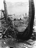 Taking the slim protection that a blasted three affords, this Marine picks-off the Japs in a pill box.  A Jap in a pill box must be shot through the small opening he uses to sight through, but that didn't bother this Marine on Tarawa.  November 1943. (Marine Corps)<br /> Exact Date Shot Unknown<br /> NARA FILE #:  127-N-63472<br /> WAR &amp; CONFLICT BOOK #:  1183