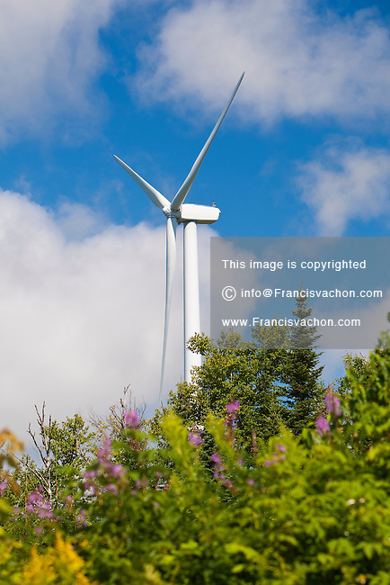 A wind turbine is pictured on the Carleton Wind Farm in Carleton-sur-Mer, Quebec, Saturday August 13, 2011. Located in the Gaspesie region of Baie-des-Chaleurs, the Carleton wind farm includes 73 GE Energy 1.5 MW turbines.