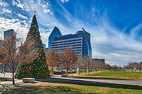 Dallas Christmas Tree in the Klyde Warren Park in downtown.  This park is built over an expressway in the center of town.  It is 5.2 acres of trails, yoga classess, childrens play area, restaurant and food truck that line up daily for those who come to the park.