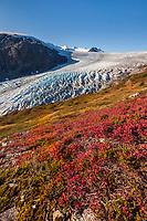 Exit glacier flows out of the Harding Ice Field, Kenai Fjords National Park, Kenai mountains, Kenai Peninsula, southcentral, Alaska.
