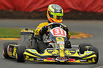 Stars, Junior Max, Rowrah, , James Singleton, Kartpix.