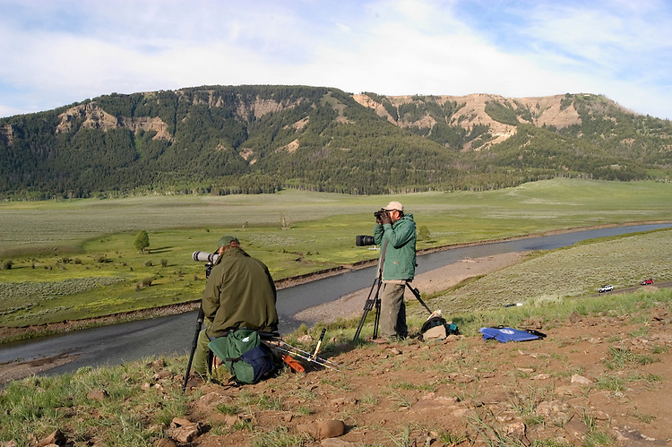 WY: Wyoming; Yellowstone National Park,.Wolf spotting in the Lamar Valley..Wolf author Rick McIntyre and camerman Bob Landis of National Geographic..Photo #: yellow1634.Photo copyright Lee Foster, 510/549-2202, lee@fostertravel.com, www.fostertravel.com..
