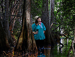 Anne Rudloe waits on her husband Jack as they wade through a cypress swamp on their property in Panacea, Florida May 10, 2009  (Mark Wallheiser/TallahasseeStock.com)