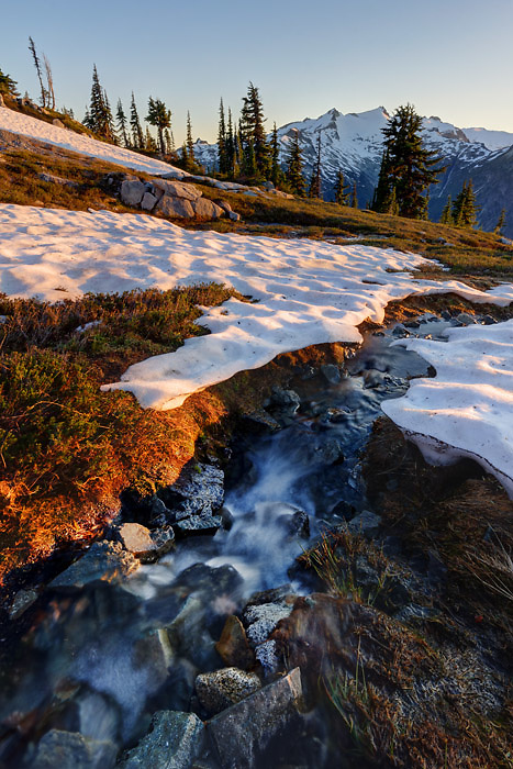 Small stream running through snowfields in subalpine meadow, Mount Daniel in background, Wenatchee Mountains, central Washington Cascade Mountains