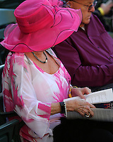 HALLANDALE BEACH, FL - JANUARY 28:  A fan studies the program on Pegasus World Cup Invitational Day at Gulfstream Park on January 28, 2017 in Hallandale Beach, Florida. (Photo by Liz Lamont/Eclipse Sportswire/Getty Images)
