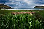 Isle of Mull, Scotland