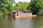 8/11/11} Vicksburg} -- Vicksburg, MS, U.S.A. -- Pictured is the King Community in Vicksburg underwater already and a dog wating to be rescued and taken to hire ground. Vicksburg a riverfront town steeped in war and sacrifice, gets set to battle an age-old companion: the Mississippi River. The city that fell to Ulysses S. Grant and the Union Army after a painful siege in 1863 is marshaling a modern flood-control arsenal to keep the swollen Mississippi from overwhelming its defenses. -- ...Photo by Suzi Altman, Freelance.