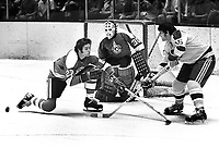 Seals #16 Tom Webster against the Penguins Joe Noris and goalie Les Binkley..(1971 photo by Ron Riesterer)
