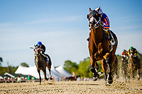 OLDSMAR, FL - MARCH 11: Stanford #2, ridden by John Velazquez, breaks the track record and wins the Challenger Stakes on Tampa Bay Derby Day at the Tampa Bay Downs on  March 11, 2017 in Oldsmar, Florida. (Photo by Douglas DeFelice/Eclipse Sportswire/Getty Images)