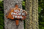 North America, Canada, British Columbia, Vancouver Island. The West Coast Trail segment of Pacific Rim National Park Reserve.