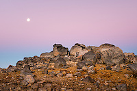 Volcanic rocks with full moon at twilight Tongariro National Park, Central Plateau, Ruapehu Region, North Island, UNESCO World Heritage Area, New Zealand, NZ