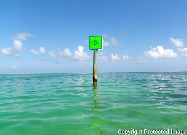 Green channel marker #5 in Tavernier Creek channel, Florida Keys, leading to Atlantic Ocean, on a sunny summer day with calm seas