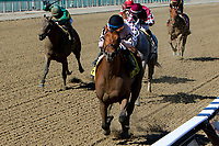 NEW YORK, NY - APRIL 08: Long Haul Bay #4, ridden by Manuel Franco, wins the Bay Shore Stakes at Aqueduct Racetrack on April 8, 2017 in the Ozone Park,  New York. (Photo by Sue Kawczynski/Eclipse Sportswire/Getty Images)