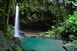 The aptly named Emerald Pool, one of Dominica's natural phenomenon