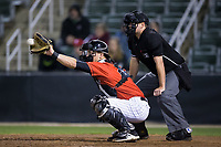 Kannapolis Intimidators catcher Nate Nolan (22) reaches for a pitch as home plate umpire Mike Rains looks on during the game against the Lakewood BlueClaws at Kannapolis Intimidators Stadium on April 8, 2017 in Kannapolis, North Carolina.  The BlueClaws defeated the Intimidators 8-4 in 10 innings.  (Brian Westerholt/Four Seam Images)
