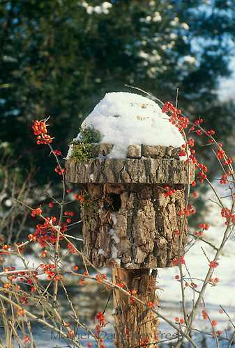 Bark birdhouse covered with snow and moss with berries wrapped around it
