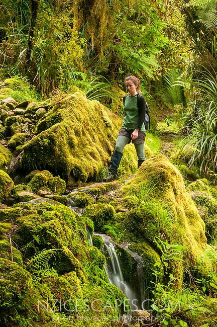 Young woman hiking in native forest near Punakaiki Cave, Paparoa National Park, Buller Region, West Coast, New Zealand, NZ