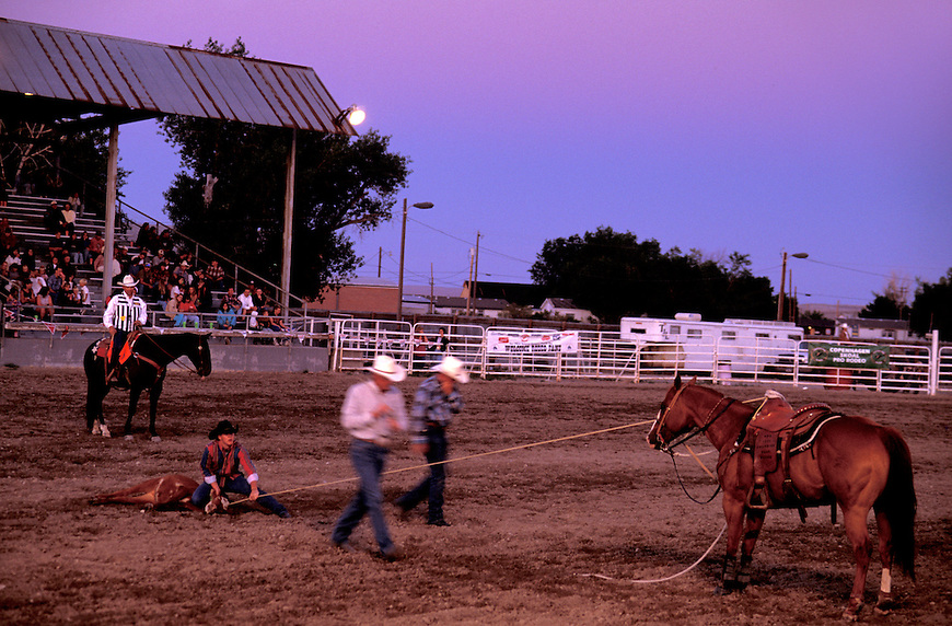 Cowboys roping at Fremont County & Fair Rodeo, Riverton, Wyoming, USA