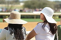 HOT SPRINGS, AR - MARCH 18: Derby hats was in fashion before the running of the Rebel Stakes at Oaklawn Park on March 18, 2017 in Hot Springs, Arkansas. (Photo by Justin Manning/Eclipse Sportswire/Getty Images)