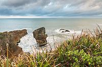 Limestone formations on Punakaiki coastline at sunrise, Paparoa National Park, Buller Region, West Coast, South Island, New Zealand, NZ