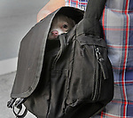 A young pup hitching a ride in his master bag on Post Street in San Francisco, CA.