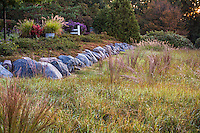 Little Bluestem grass (Schizachyrium scoparium) in reddish fall color in midwest meadow garden with prairie motif