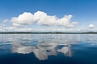 Reflections of clouds in the water in Dolphin Bay, Bocas del Toro, Panama