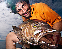 The Almaco jack (Seriola rivoliana) is a much sought after game fish for jigging fishermen, this one has been caught on a jig in fron ot the island of Corvo, at the Azores