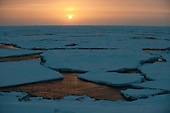 Sunset over the sea ice in the Bering Sea in springtime.