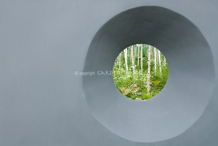 Round window from modern gray wall with surprising discovery view of white bark birch trees and white flowered plants, sense of wonder, surprise, serenity, peace