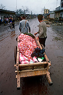April 15th, 1989, Poyang, Jiangxi Province, China: daily life- A sick person is being carried in a pulling cart to the nearby infirmary.