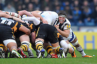 London Wasps v Bath : 06.01.13