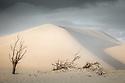 Coffin Bay Sand Dunes Australia