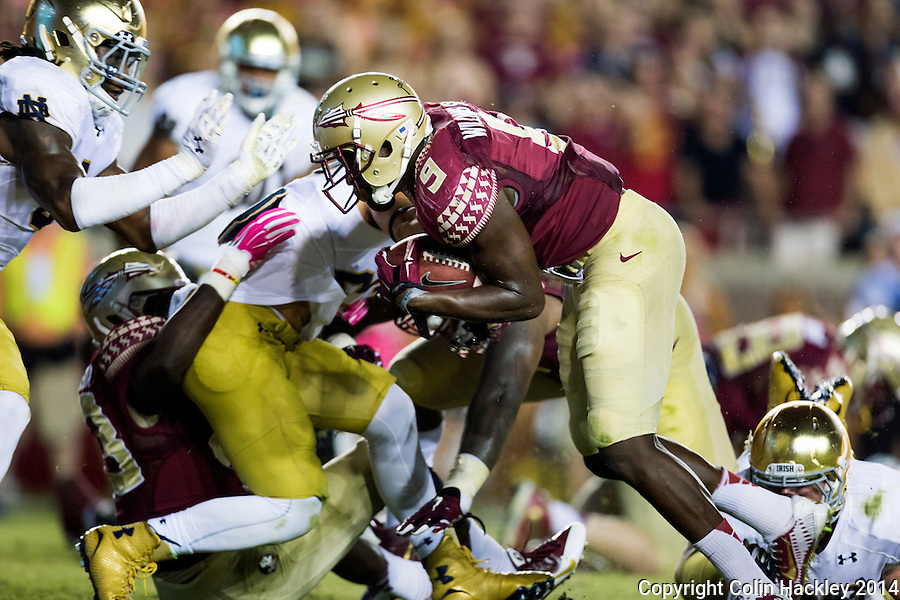 TALLAHASSEE, FLA. 10/18/14-FSU-ND101814CH-Florida State's Karlos Williams lunges for a third quarter touchdown against Notre Dame Saturday at Doak Campbell Stadium in Tallahassee. The Seminoles beat the Fighting Irish 31-27.<br /> COLIN HACKLEY PHOTO