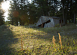 Idaho, Eastern, Lemhi County, Leadore. Remains of the Gilmore townsite on a summer morning.